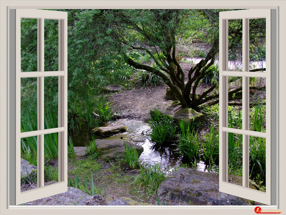 Window, Garden, Window Frames, Outlook, Bach