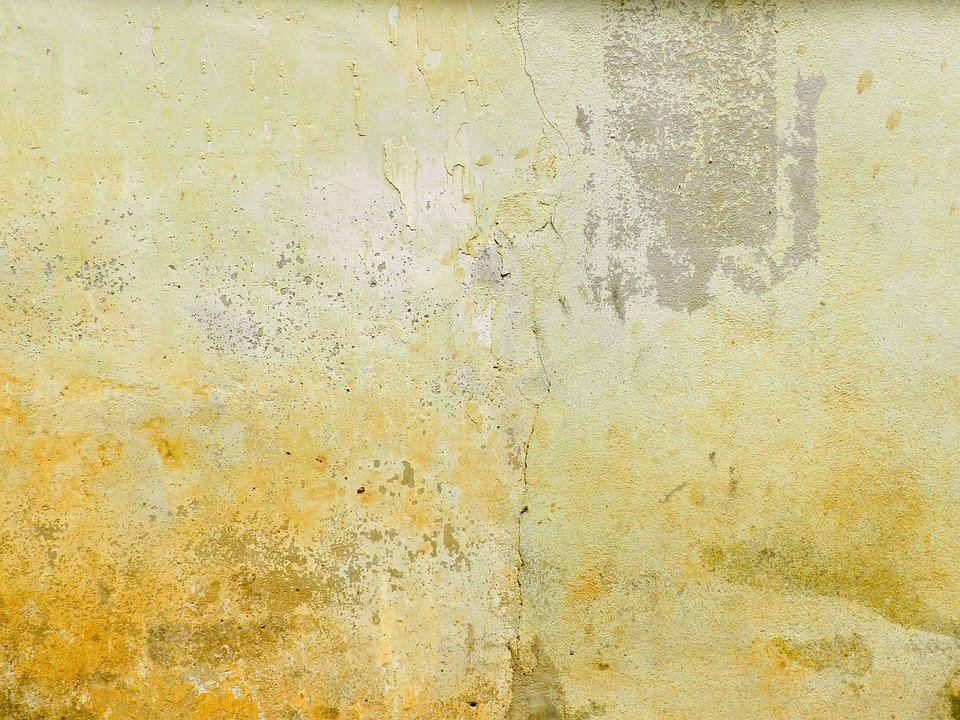 Free photo mortar wall aged yellow brown free image for Brown and yellow walls