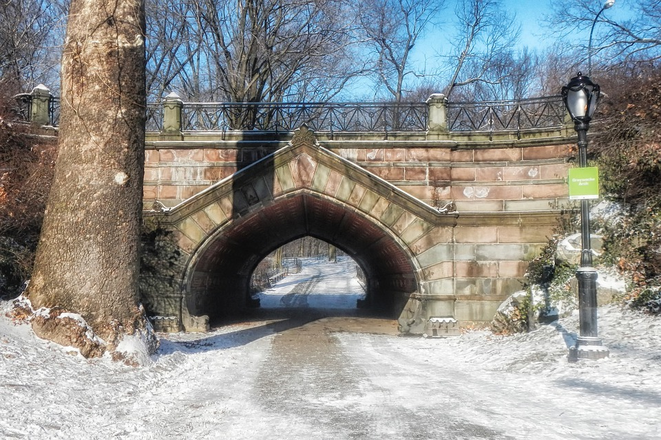 Central Park, New York City, Landmark, Bridge, Winter