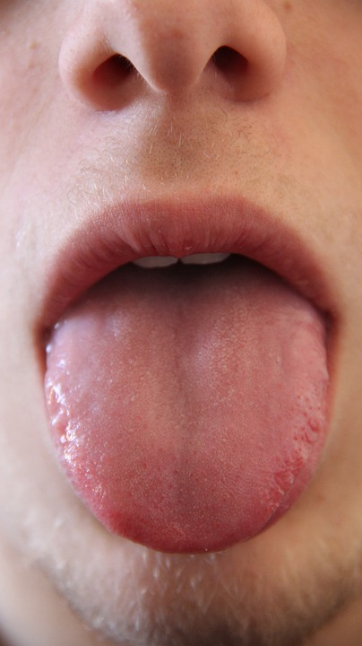 Tongue, Mouth, Mammal, Human, Anatomy, Head, Face