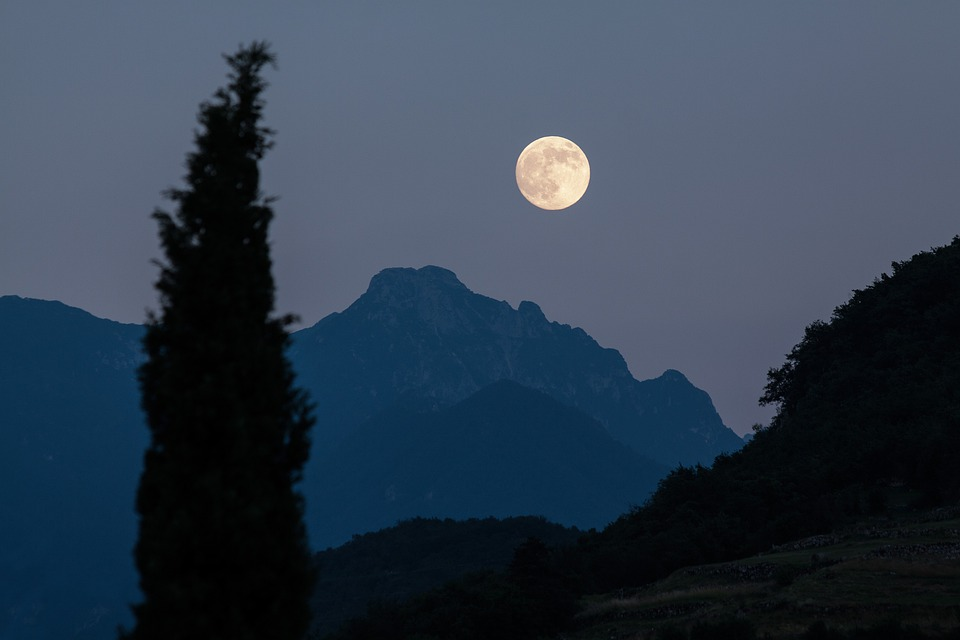 Moon, Cypress, Mountains, Moonrise, Full Moon, Romantic