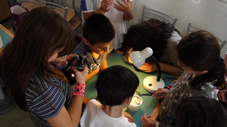 Kinder sie untersuchen mikroskop · kostenloses foto auf pixabay