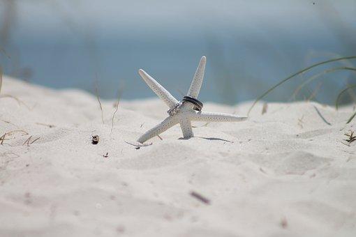 ヒトデ, 砂, ビーチ, 青い空, 青色の水, ウェディング バンド, 結婚