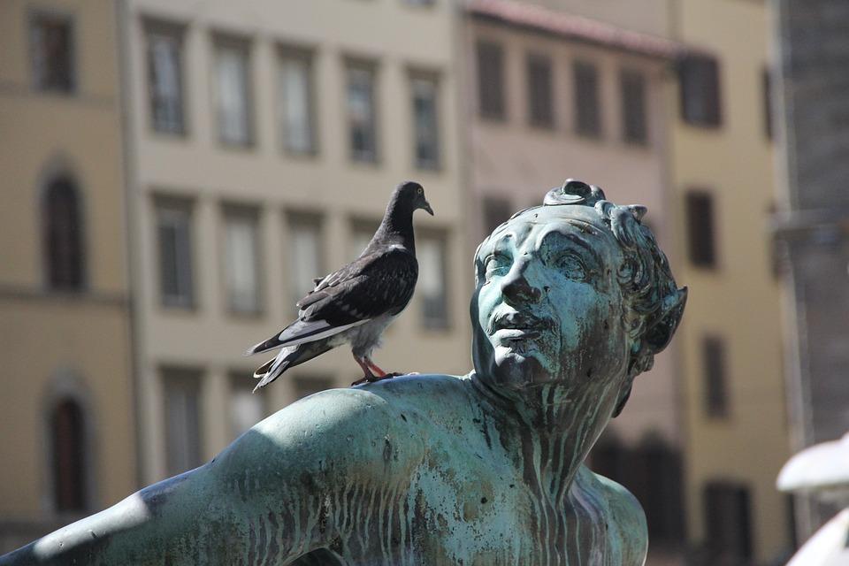 Estatua, Bronce, Paloma