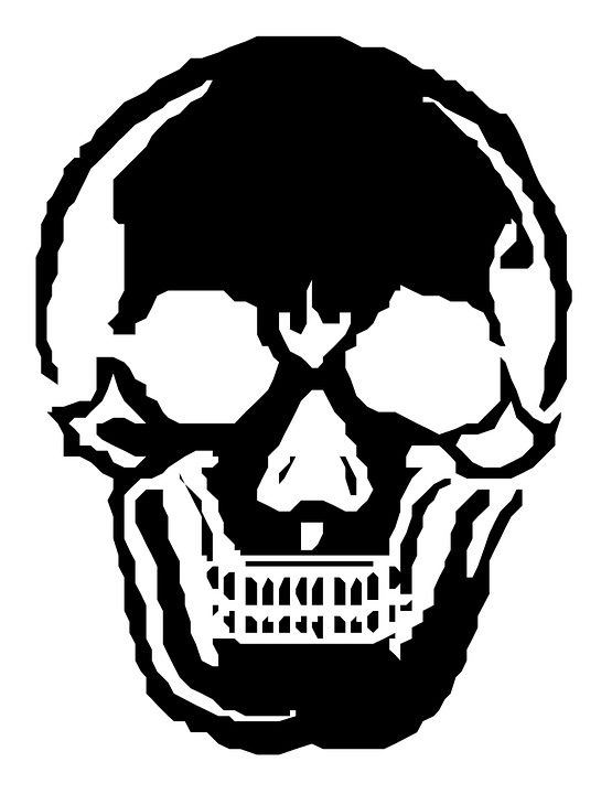 skull human skeleton halloween horror spooky - Halloween Skeleton Head