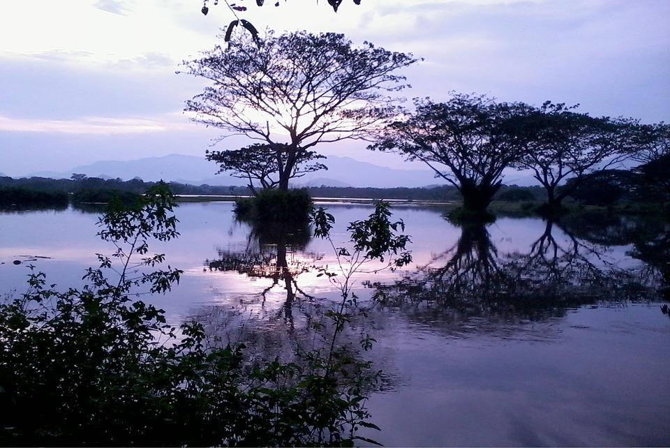 Nature, Tank, Sky, Sri Lanka, Water, Ceylon