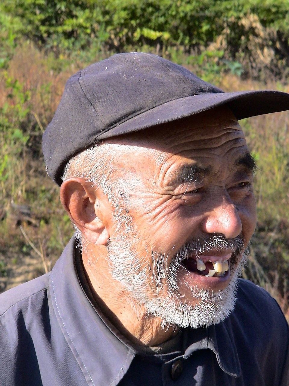 Смешные картинки человек без зубов, аниме