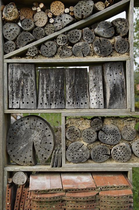 kostenloses foto nisthilfe nistkasten insekt. Black Bedroom Furniture Sets. Home Design Ideas