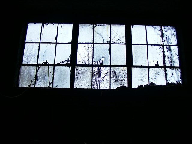 Free Photo Window Pane Window Panes Free Image On