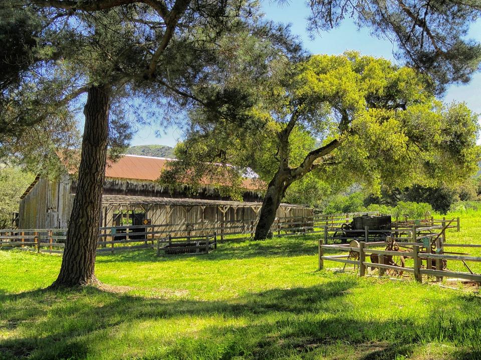 Free photo: California, Barn, Farm, Rural