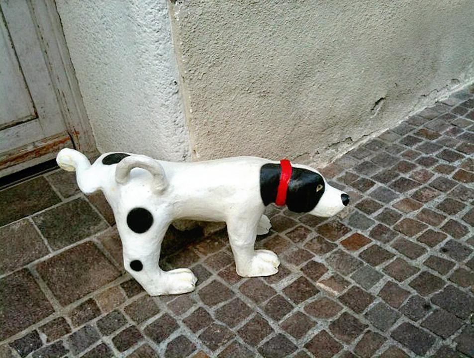犬のしつけには苦いスプレーがおすすめ!最新人気アイテムを一挙公開
