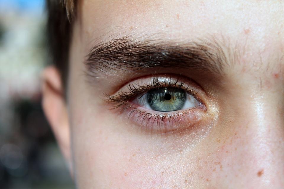 Eye, Blue, Face, Guy, Eyelashes, Eyebrows