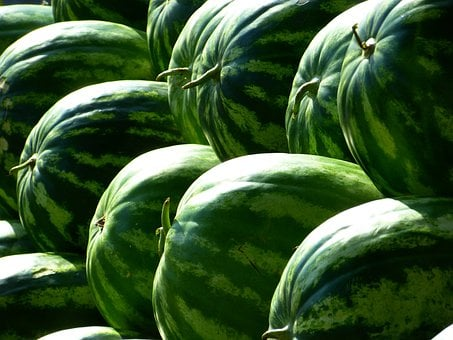 Melons Water Melons Fruit Green Watermelon