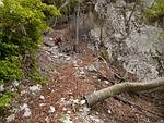 hike, trail, climber