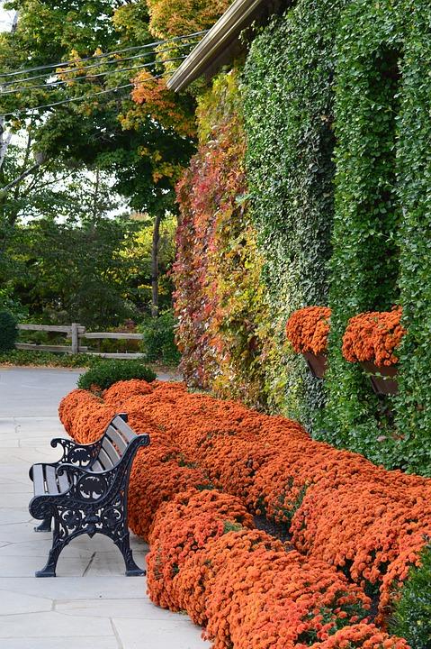 Free photo: Autumn, Landscape, Garden, Flowers - Free ...