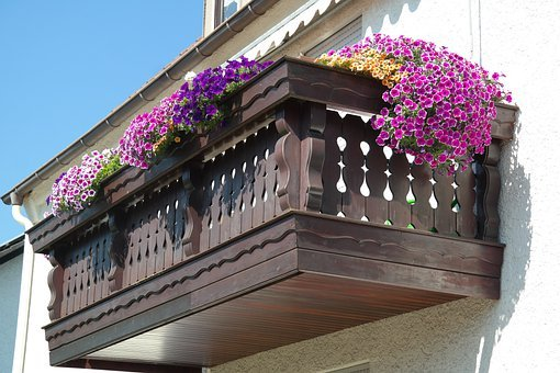 How to build a garden on your balcony