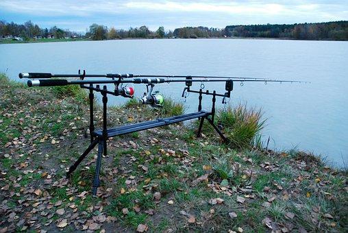 棒, 渔业, 工具, 池塘, 黄昏, 站, 银行, 鱼竿, 水, 钓鱼