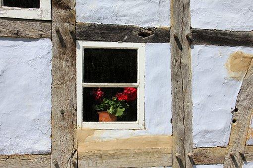 Blumen, Im, Fenster - Kostenlose Bilder auf Pixabay