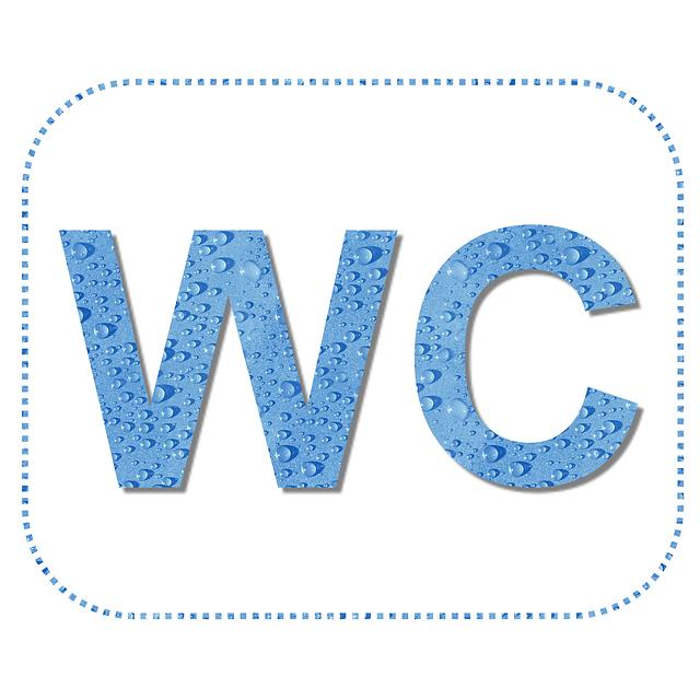 wc toilette handicap s image gratuite sur pixabay. Black Bedroom Furniture Sets. Home Design Ideas