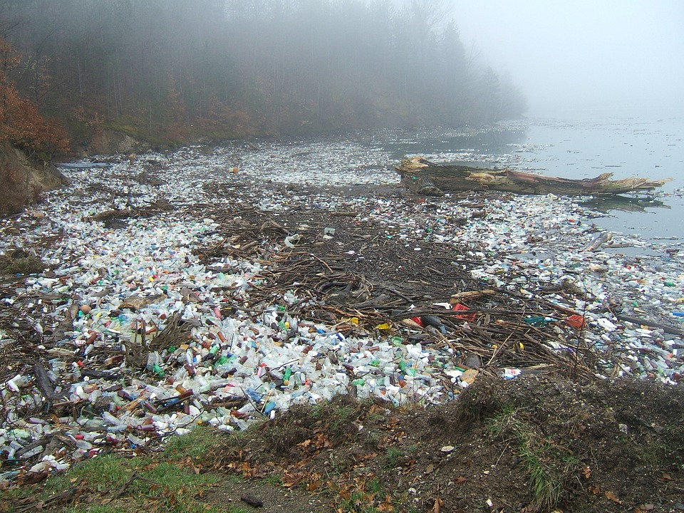 Pollution, Drina, Plastic Waste, Natural Pollution