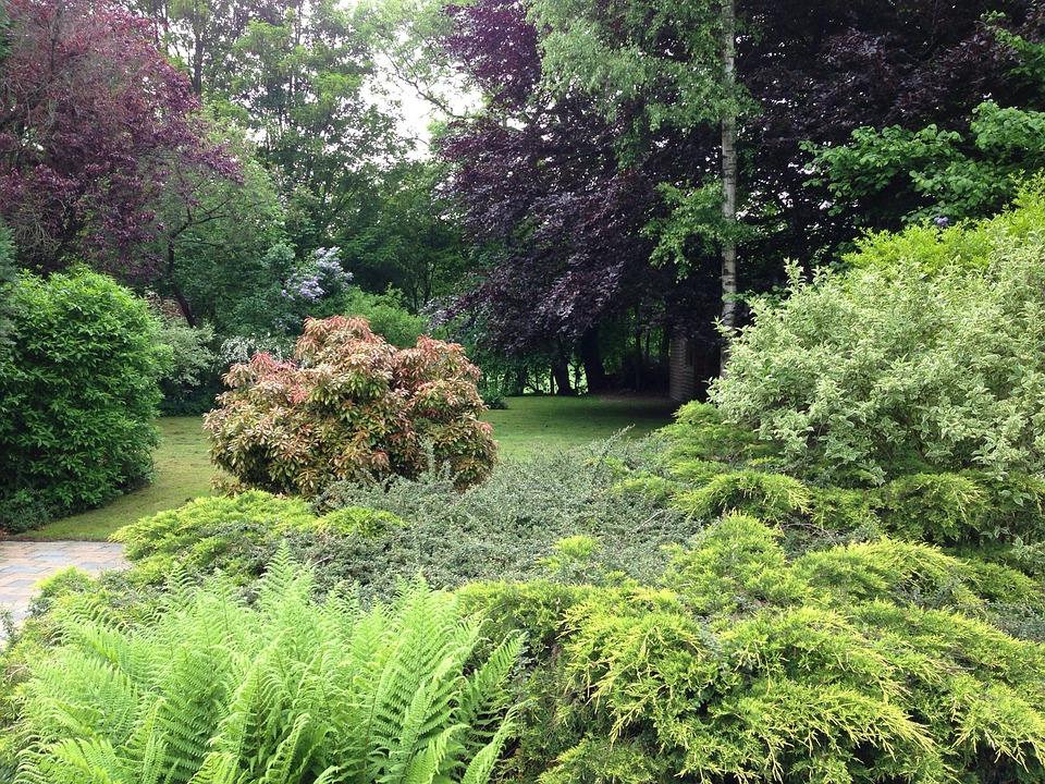 Park Als Tuin : Park tuin drenthe · gratis foto op pixabay