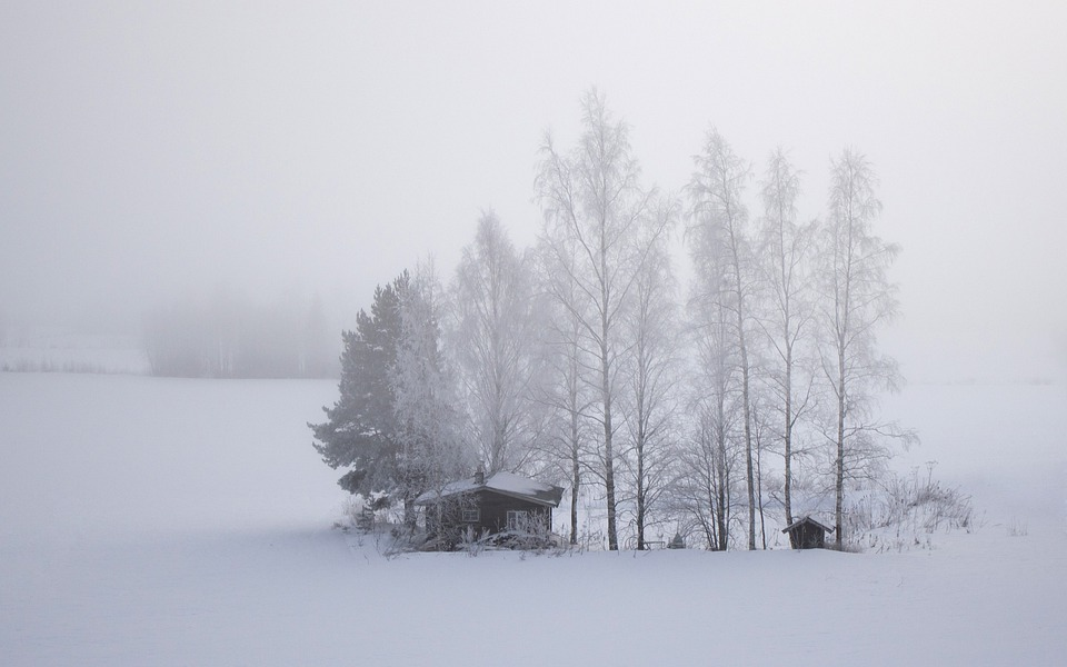 Finland, Snow, Field, Cold, Cabin, Trees, Winter