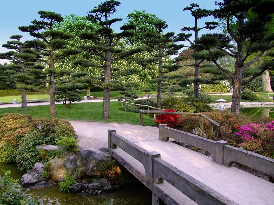 Gratis foto landschap japanse tuin tuin park gratis afbeelding op pixabay 207815 - Tuin landscaping fotos ...
