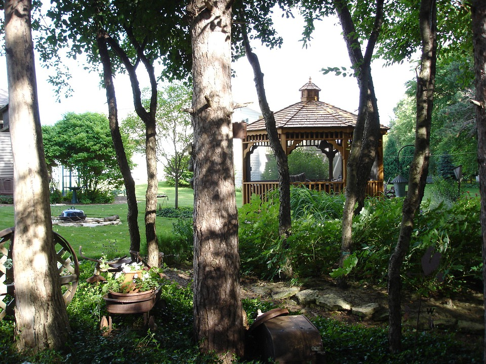 Gazebo, Canopy, Garden, Backyard, Trees, Shelter
