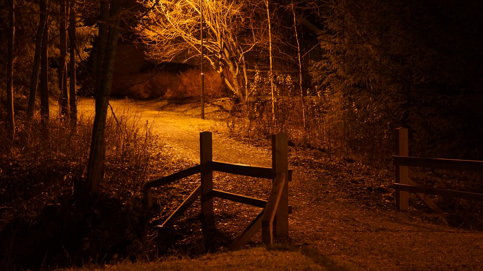 free photo night scene free image on pixabay 208896 transparent vector christmas lights vector christmas string lights