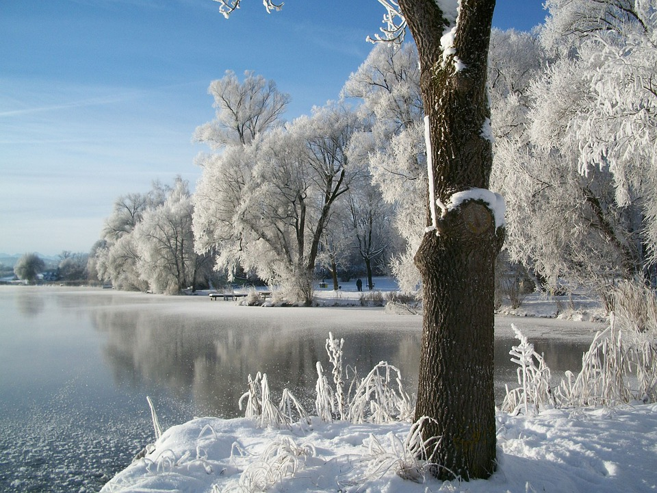 Winter schnee teich kostenloses foto auf pixabay for Teich winter