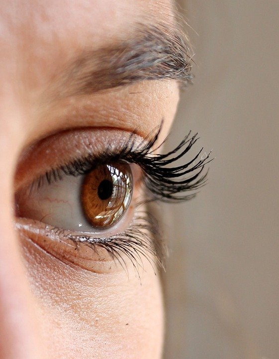 Eyelashes Images Pixabay Download Free Pictures