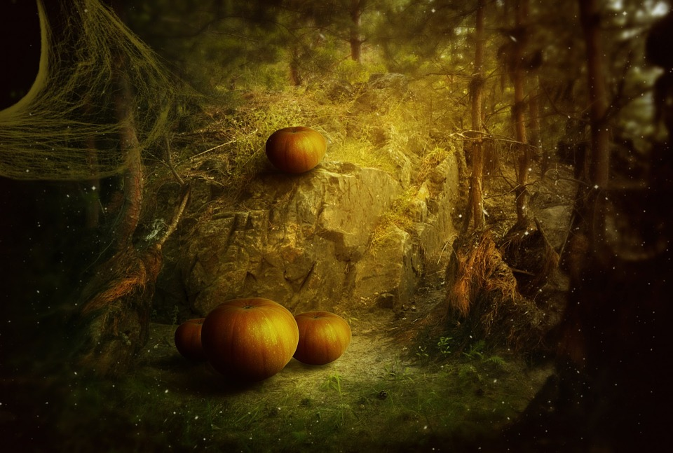 halloween holiday pumpkin fantasy dark forest