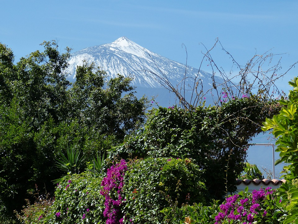 Foto gratis: Tenerife, Islas Canarias, Paisaje - Imagen