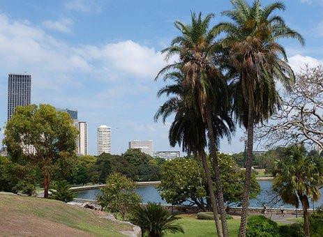 Sydney in 7 Tagen - Botanical Garden