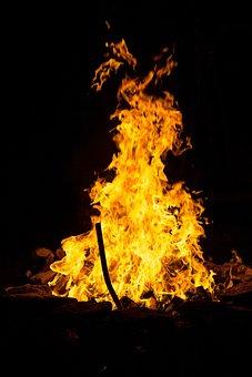 Fuego, Quema, Bosques, Oro, Amarillo