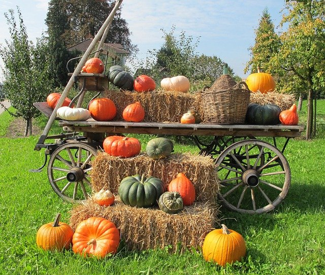 Pumpkins Decoration Wooden Wagon 183 Free Photo On Pixabay