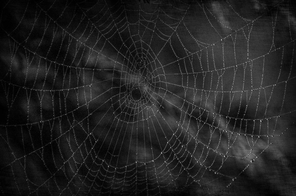 Photo gratuite: Sombre, Toile D'Araignée, Halloween - Image gratuite sur Pixabay - 216714