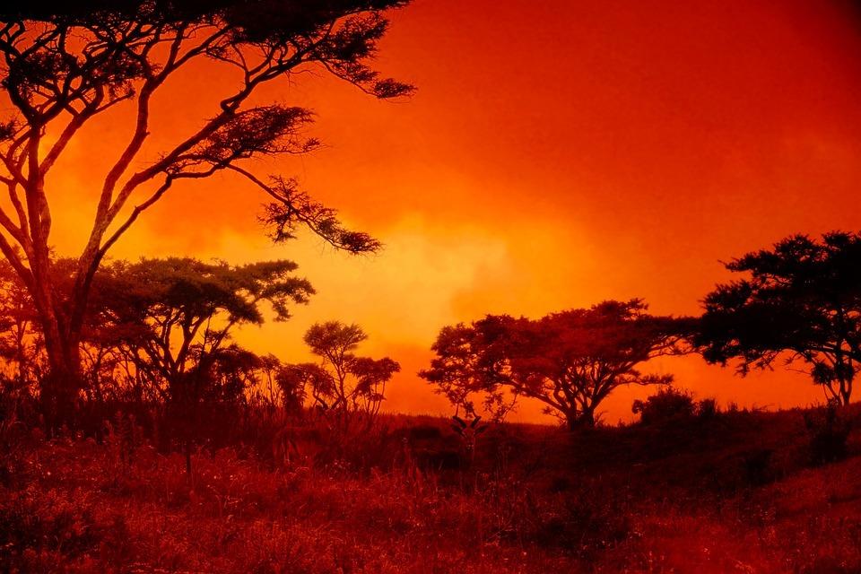 kostenloses foto sonnenuntergang afrika landschaft kostenloses bild auf pixabay 217214. Black Bedroom Furniture Sets. Home Design Ideas