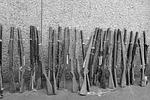 riffles, guns, drill