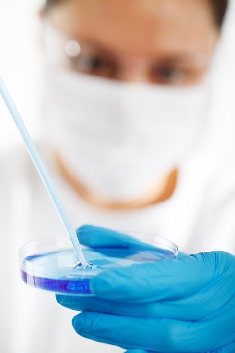 Биология, Изследвания, Лаборатория, Технология