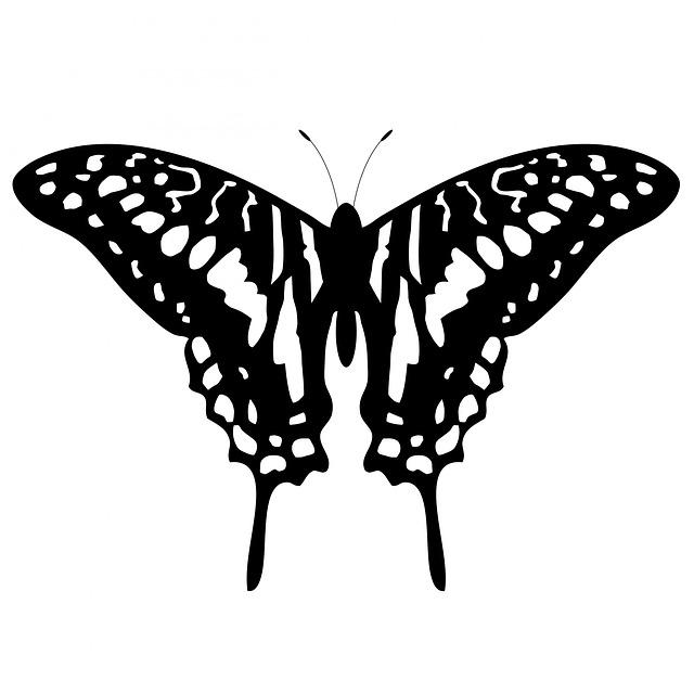 Kupu Hewan Serangga Gambar Gratis Di Pixabay