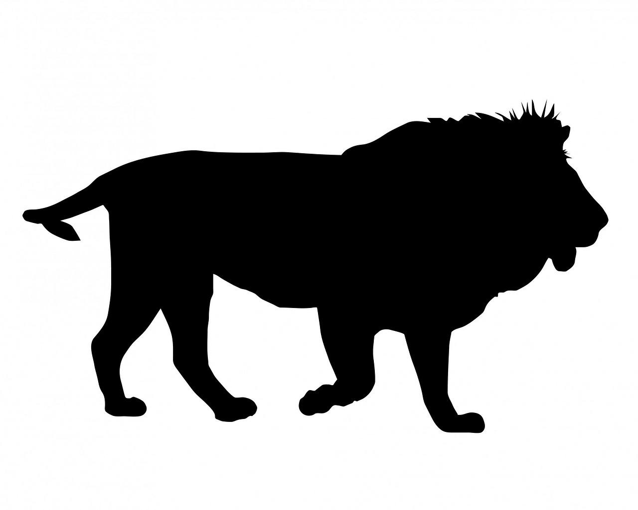 преимущества рисунок силуэты животных маленькие кусочки
