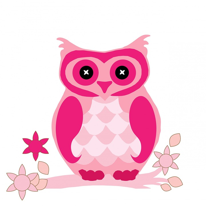 Owl Bird Animal Free Image On Pixabay