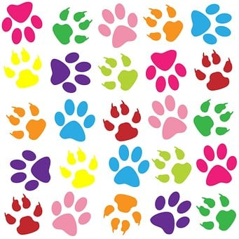 paw print images  u00b7 pixabay  u00b7 download free pictures rainbow clipart images black and white rainbow clipart images black and white