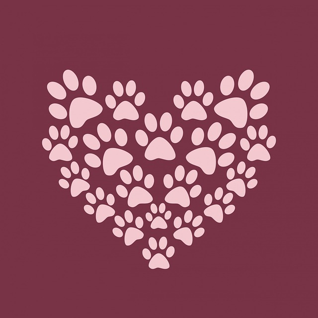 free illustration paw print paw prints heart cute free image on pixabay 220232 - Cute Pictures To Print