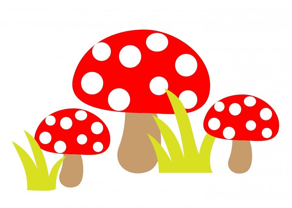 Free Illustration Toadstool Toadstools Art Cute Free