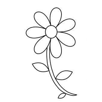 Flower Floral Outline Coloring Page Colori