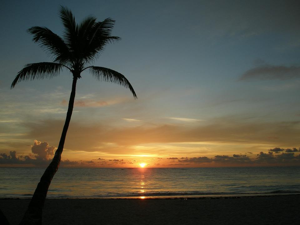 Dominikana, Plaży, Wschód Słońca, Morze, Palm