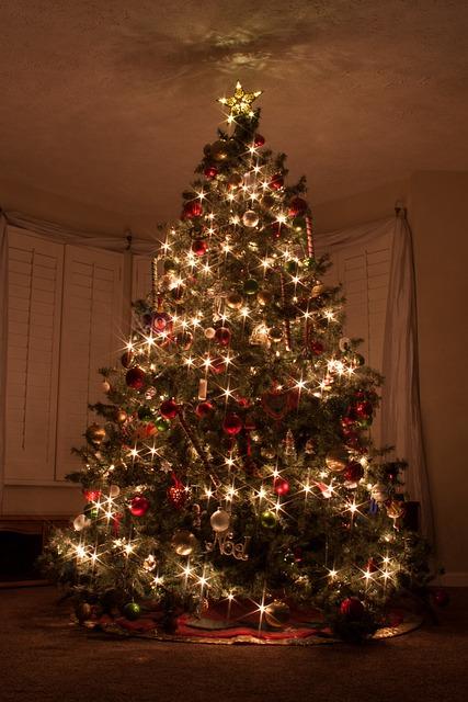 크리스마스 트리 불빛 스타 183 Pixabay의 무료 사진