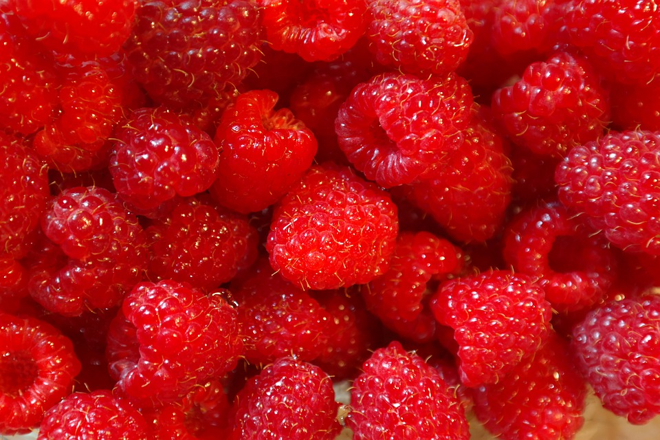 fruit for healthy hair berry fruits